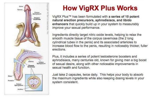 vigrxplus